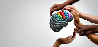 Science Alert! Science Alert!  The Science of Alzheimer's Disease and the Brain
