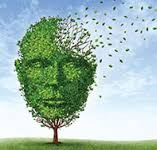 Our Aging Brains
