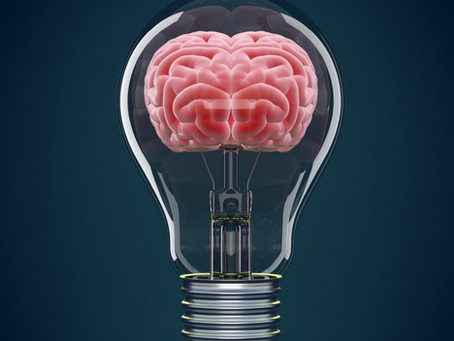 Always on Alert: Your Brain and the Threat Response