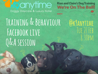 K9 Anytime Facebook Live Q&A