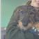 Online Training Class: Puppy 101 Part 1 - Choosing a puppy