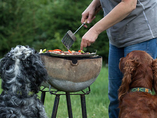BBQ Foods Dangerous for your Dog