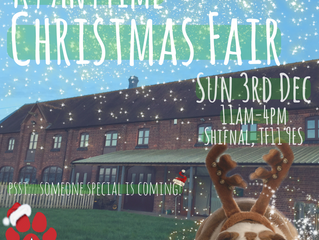 K9 Anytime Christmas Fair