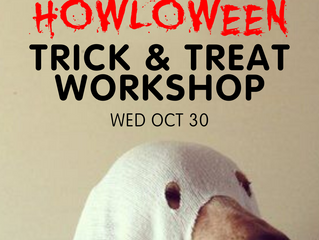TRICK & TREAT Workshop