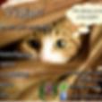 Pet Sitter -  - Águas Claras