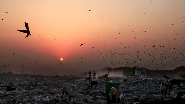 A thick blanket of smoke is seen against the setting sun as young ragpickers search for reusable material at a garbage dump in New Delhi, India.