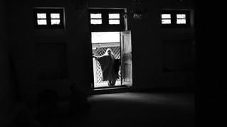 Mughli arrives at a sufi shrine for prayers in Srinagar, Nov. 01, 2007.