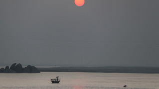 An endangered Ganges river Dolphin, right, surfaces next to a fisherman rowing his boat as the sun sets in Kahalgoan, one of the few remaining safe oasis for the species, in the Indian state of Bihar, Friday, November 15, 2019. The river Dolphins continuously face extinction because of pollution, climate change and the fight for fish. Both humans and Ganges river Dolphin like slow moving river with plenty of fish. This has led to shrinking fish populations for people and more dolphins dying after being accidentally caught in fishing nets.