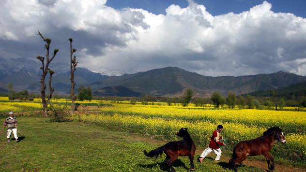 06-Kashmir-109.jpg