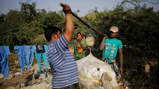 Marjina watches as trash dealers weigh segregated trash outside her shanty home on the outskirts of New Delhi, India.