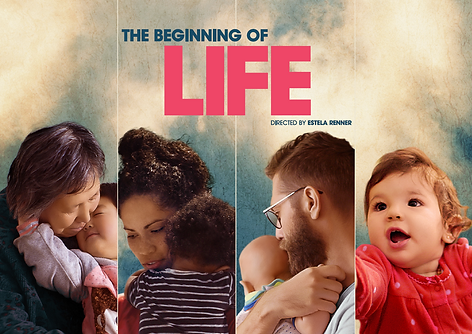 The-Beginning-of-Life.png