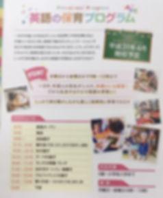 preschool pamphlet.jpg