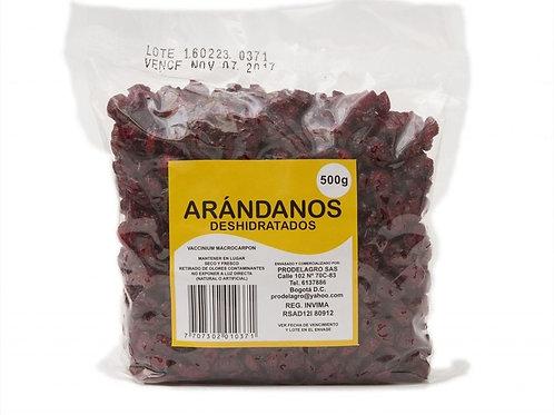 ARANDANOS 500g