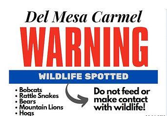 wildlife annoucement_edited.jpg
