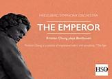 Beethoven Heidelberg Symphony.webp
