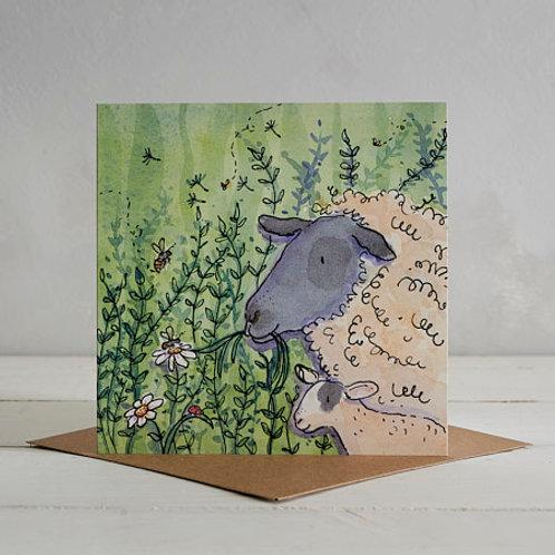 Sheep Card by Helen Wiseman