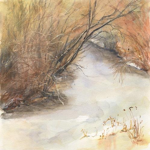 Bush Creek