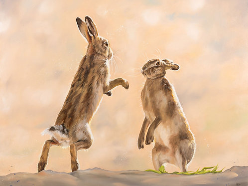 Whiskers at Dawn (boxing hares)