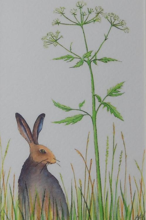 Meadow Hare Print