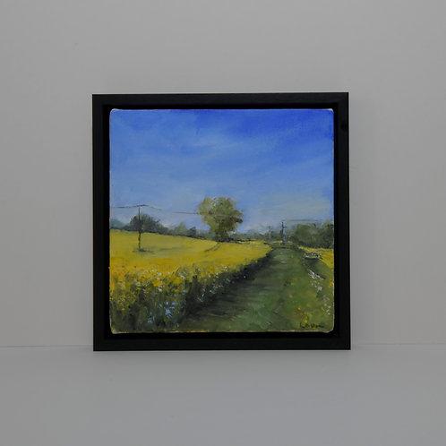 Gt Easton Country Walk Painting Essex Oilseed Rape Field