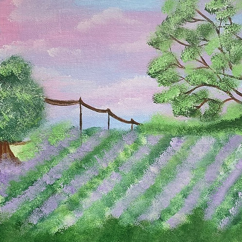 Into the Lavender Fields
