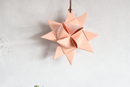 Small Froebel Star
