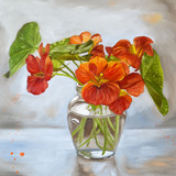 Backlit Nasturtiums Flower Oil Painting