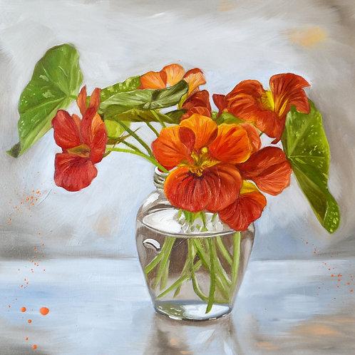 Backlit Nasturtiums Flower Oil Painting