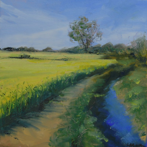 Gt Easton River Painting - Essex Oilseed Rape Fields