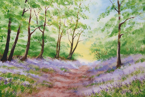 Painting of Bluebells in Swan Wood, Stock