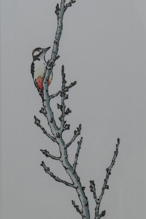 Woodpecker Drypoint