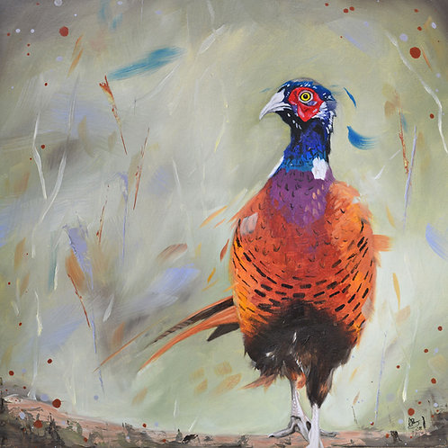 Dashing (pheasant)