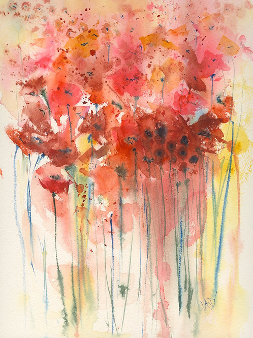 Poppies in the sunlight card