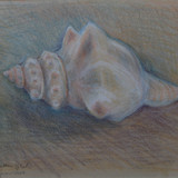 Trapezium shell Painting