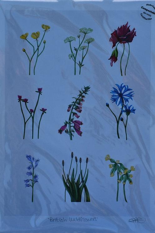 British Wildflowers Charity Print