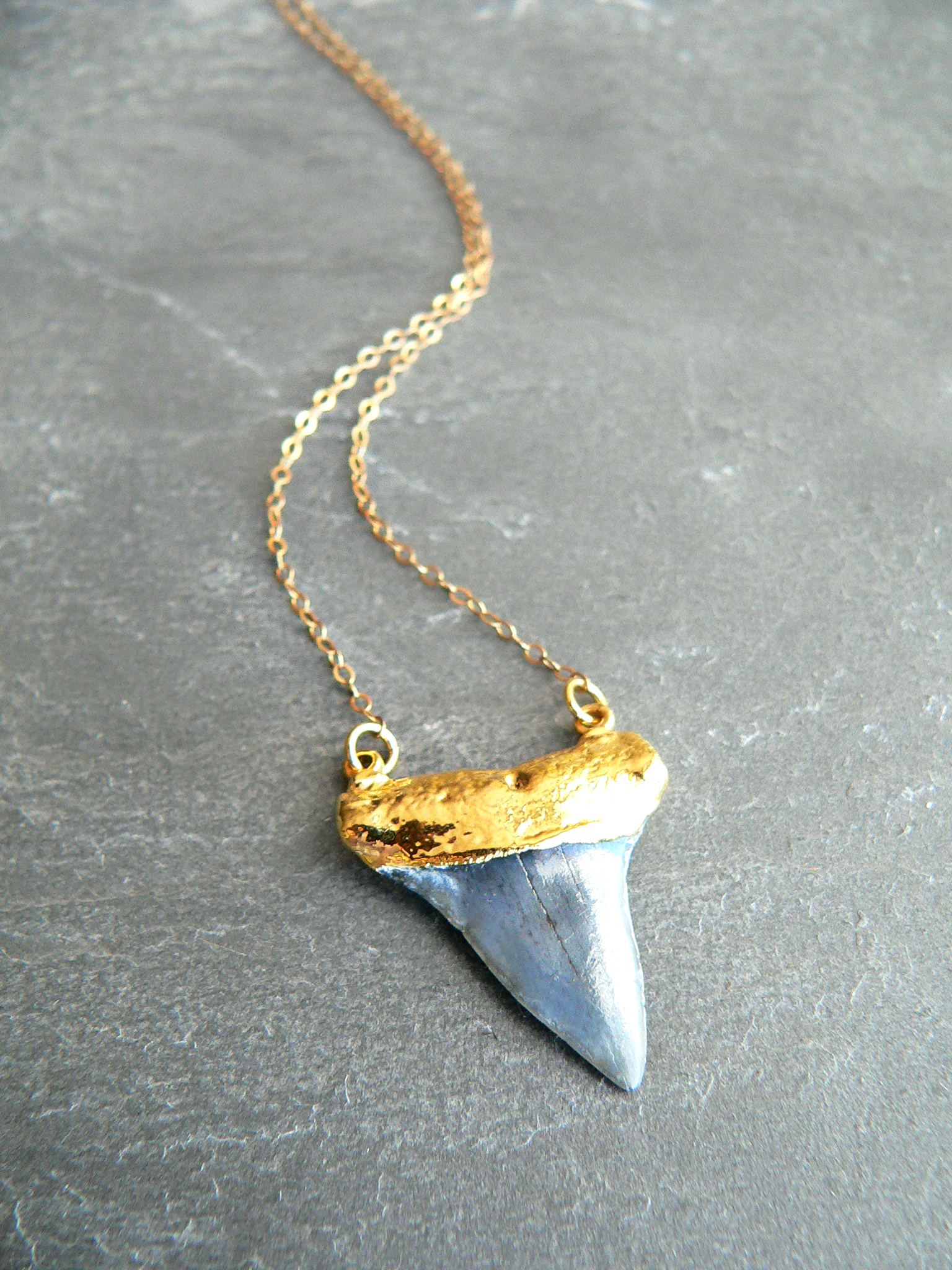 REAL SHARKTOOTH NECKLACE