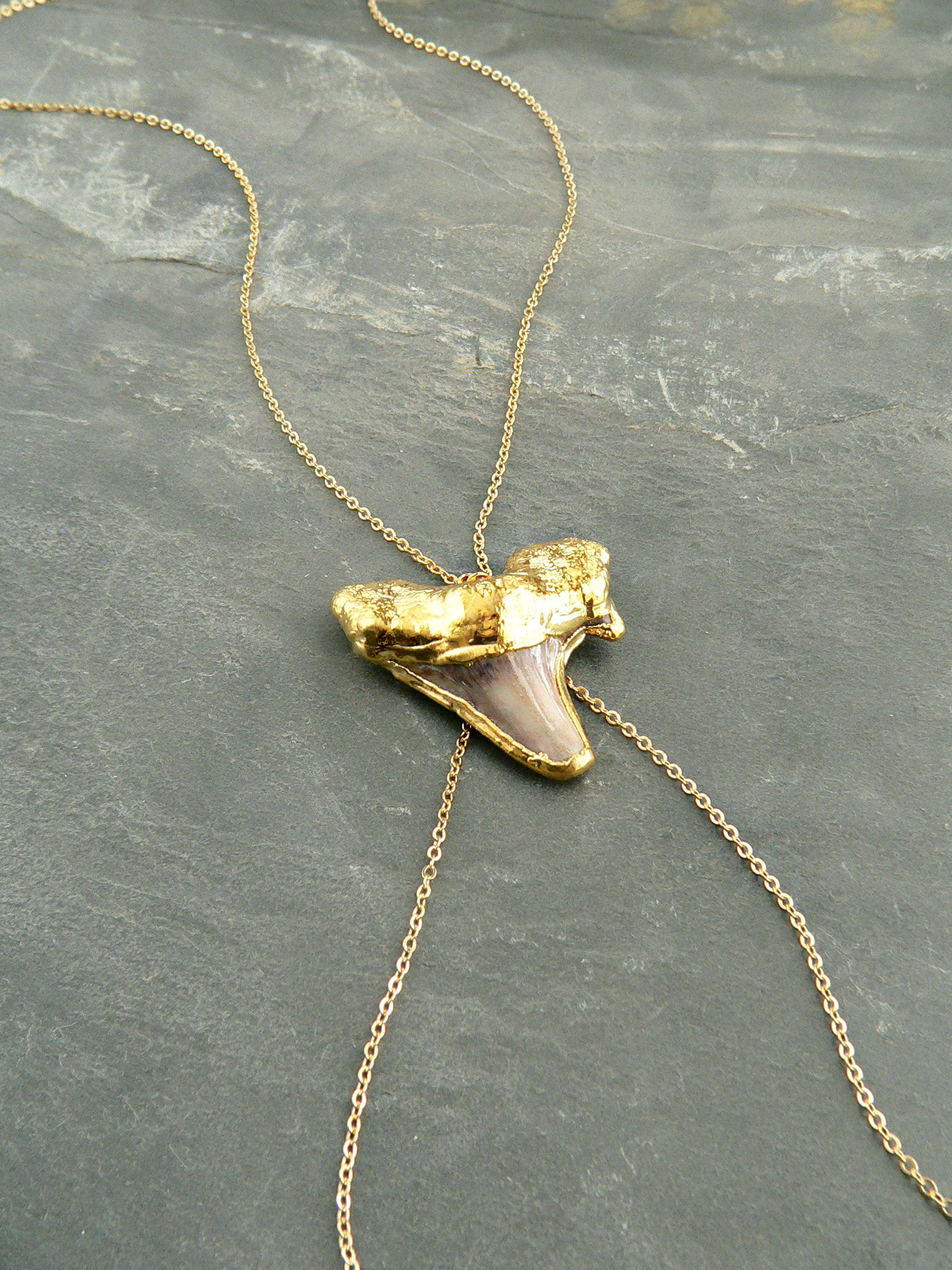 REAL SHARKTOOTH BODYCHAIN