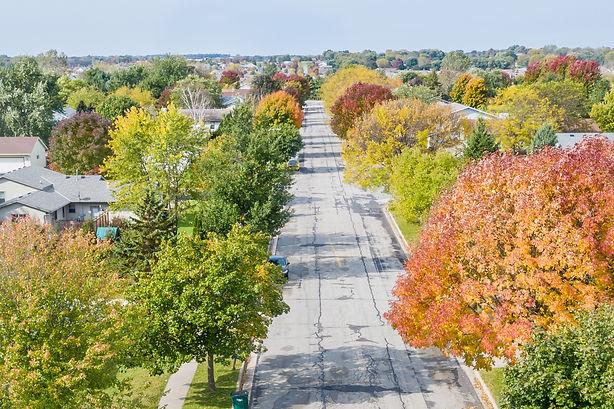 Fall Colors 10 15 19 190159.jpg