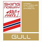 skiingnorway_gull.jpg