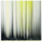 BSL-ref--36905-image (1).jpg