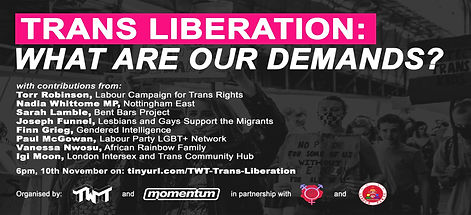 Trans Liberation: What Are Our Demands?