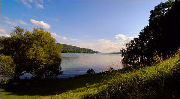 Central Leatherstocking