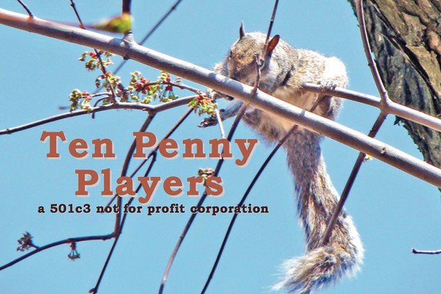 Top Penny Players Inc, Staten Island