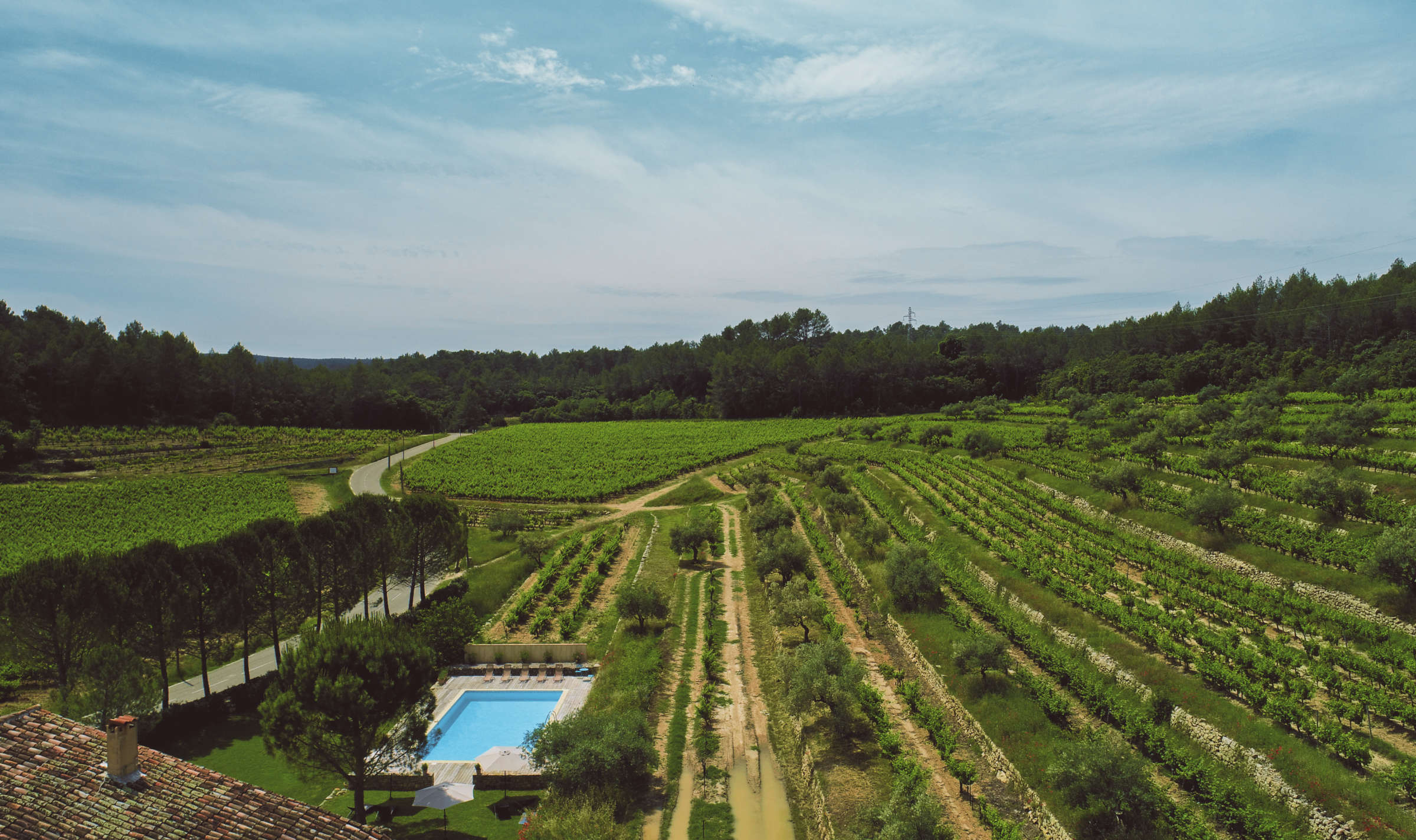 Camparnaud Provence vineyard drone - sma