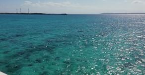 今日の宮古島