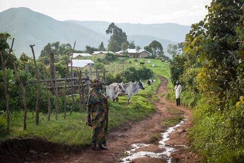 Bamenda - Cameroon