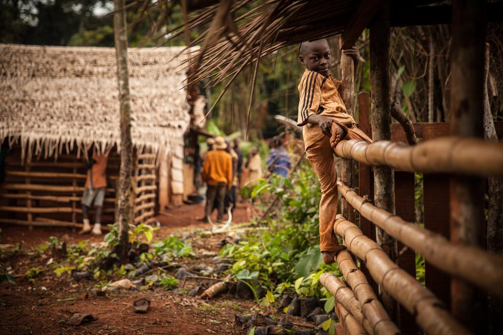 Boy on a fence near Ampel - Cameroon