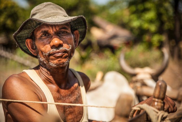 Farmer near Petlad - India
