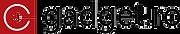 logo-gadget.png