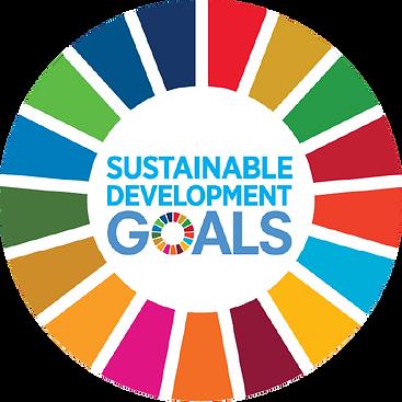 kisspng-sustainable-development-goals-su